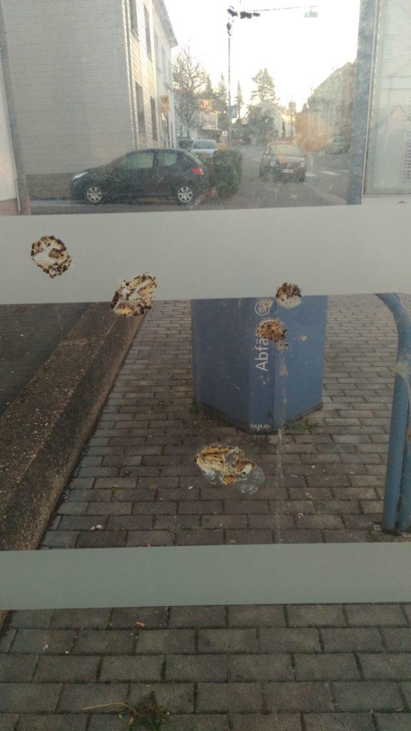 Verschmutzte Bushaltestelle im Saarland